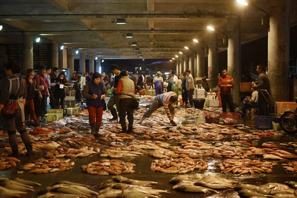 澎湖魚市場
